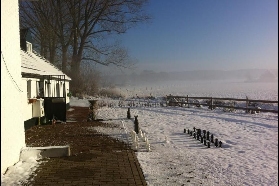 Winter in de Achterhoek - De Waanhoeve