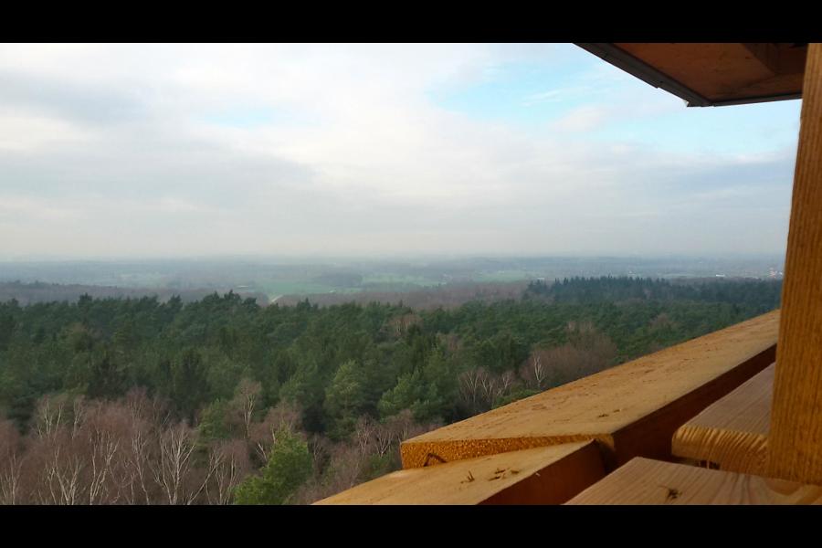 Landschap Bergherbos vanaf uitkijktoren Stokkum