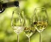wijn en asperges in de achterhoek