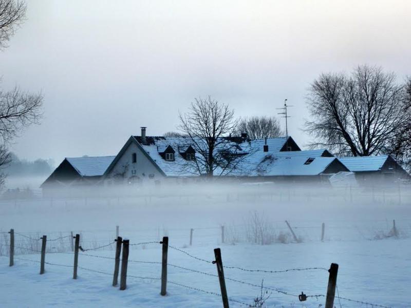 De Waanhoeve gehuld in de winterse mist