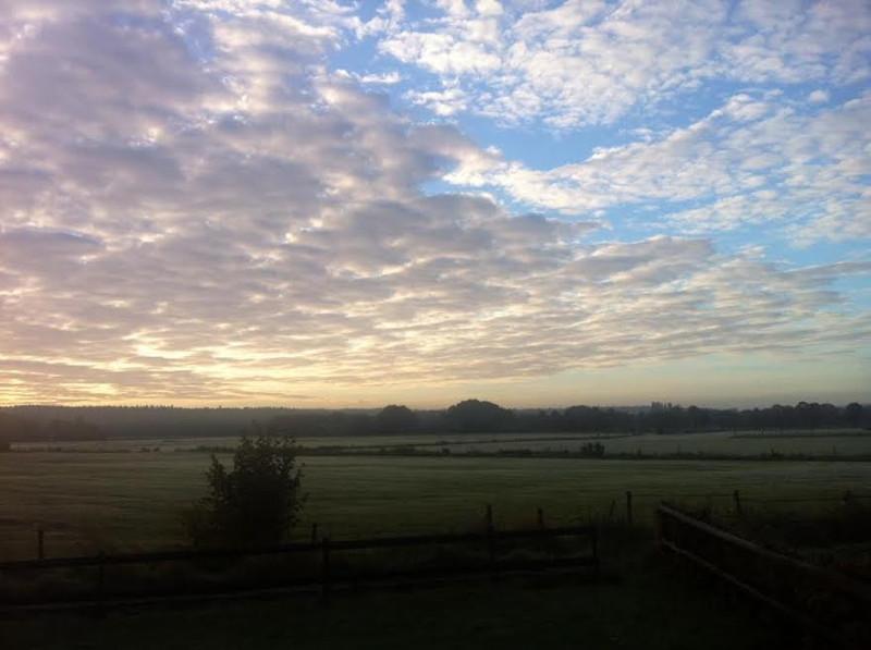 Geniet van het uitzicht op de Waanhoeve - 4 seizoenen mooi